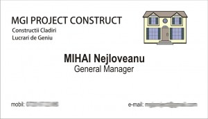 mgi project construct