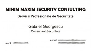minim maxim security consulting